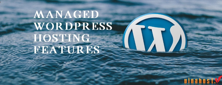 vinahost-The-advantages-of-managed-WordPress-hosting-Cambodia-part-2-1